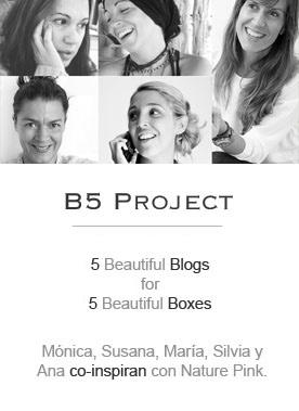 B5 Project